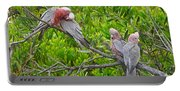 Beautiful Galah Birds With Babies. Wilsons Promontory National Park, Australia Portable Battery Charger