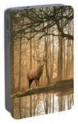 Beautiful Landscape Image Of Still Stream In Lake District Fores Portable Battery Charger