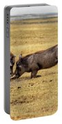 Beauty On The Hoof, The Warthog Portable Battery Charger