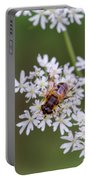 Bee Relaxing On A Flower. Portable Battery Charger