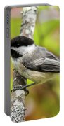 Chickadee On Tree Portable Battery Charger