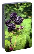 Black Raspberries  Portable Battery Charger
