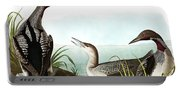 Black Throated Diver, Colymbus Arcticus By Audubon Portable Battery Charger