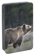 Blondie The Bear Portable Battery Charger