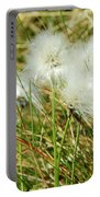 Bog Cotton On The Moor Portable Battery Charger