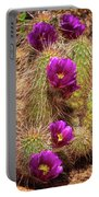 Bouquet Of Beauty Portable Battery Charger by Rick Furmanek