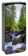 Bridge Below Rainier Portable Battery Charger