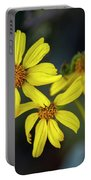 Brittlebush H1853 Portable Battery Charger by Mark Myhaver