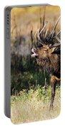 Bull Elk 3068 Portable Battery Charger
