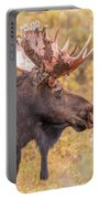 Bull Moose In Fall Colors Portable Battery Charger