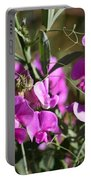 Bunch Of Pink Sweet Peas In The Sun Portable Battery Charger