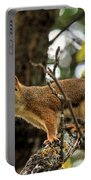 Bushy Tailed  Portable Battery Charger