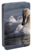 Busking Cygnet Portable Battery Charger