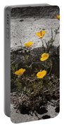 California Poppy Trying Portable Battery Charger