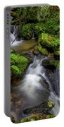 Cascades Of Lee Falls Portable Battery Charger