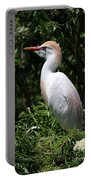 Cattle Egret With Breeding Feathers Portable Battery Charger