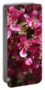 Cherry Blossoms 2019 IIi Portable Battery Charger