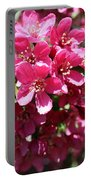 Cherry Blossoms 2019 Iv Portable Battery Charger