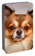 Chihuahua Dog Portrait Portable Battery Charger