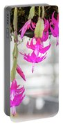 Christmas Cactus In Razzle Dazzle Pink Portable Battery Charger