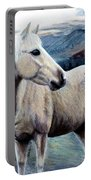 Cochise Portable Battery Charger