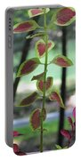 Coleus Portable Battery Charger