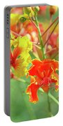 Colorful Morning Portable Battery Charger