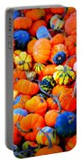 Colorful Tiny Pumpkins Portable Battery Charger