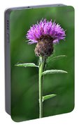 Common Knapweed 1 Portable Battery Charger