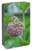 Common Milkweed Portable Battery Charger