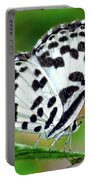 Common Pierrot Butterfly Portable Battery Charger
