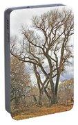 Cottonwood Az Bayou Leafless Tree Sky Clouds Path 31262019  Portable Battery Charger