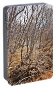 Cottonwood Az Bayou Leafless Trees Scrub Water Sand Clouds 3262019_5320 Portable Battery Charger