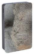 Creatures Of Sand Portable Battery Charger