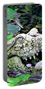 Crocodile Profile. Portable Battery Charger