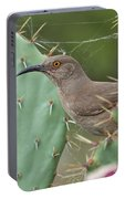 Curve-billed Thrasher, Cochise County Arizona Portable Battery Charger