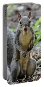 Cute Squirrel Portable Battery Charger