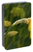 Daffodil In Sun Portable Battery Charger