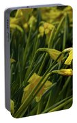 Daffodil Starlight Portable Battery Charger
