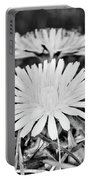 Dandelion Up Close And Personal Black And White Portable Battery Charger
