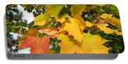 Days Of Autumn 24 Portable Battery Charger