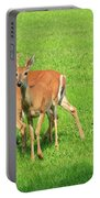 Deer Looking At You Portable Battery Charger