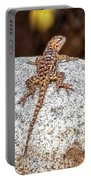 Desert Spiny Lizard H1809 Portable Battery Charger by Mark Myhaver
