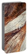 Detail Of Abstract Shape On Old Wood Portable Battery Charger