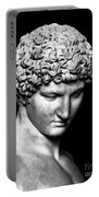 Detail Of Antinous  Portable Battery Charger