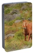 Digital Watercolor Painting Of Stunning Image Of Wild Pony In Sn Portable Battery Charger