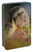 Duck 1 Portable Battery Charger