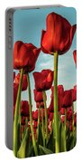 Dutch Red Tulip Field. Portable Battery Charger by Anjo Ten Kate