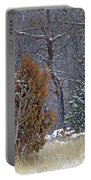 Early Winter On The Western Edge Portable Battery Charger