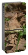 Eastern Garter Snake - 9167 Portable Battery Charger